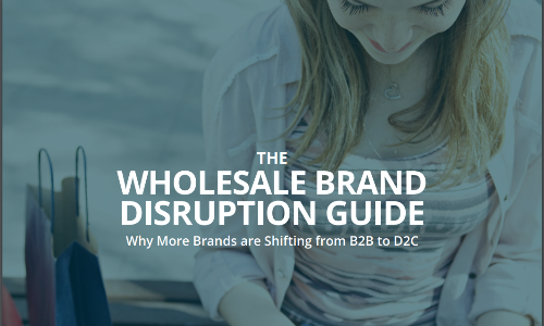the wholesale brand disruption guide